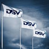 DSV flags