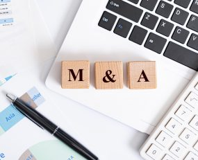 Ti's own M&A database for the global logistics sector reveals which sectors have been most popular for acquisitive companies over the past twenty five years.