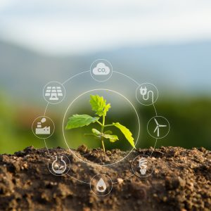 Between May and July 2021, Ti undertook a perception and usage survey examining a range of issues related to the sustainability policies employed within the logistics and supply chain industry.